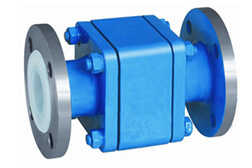 SS 304 PTFE Lined Ball Check Valve
